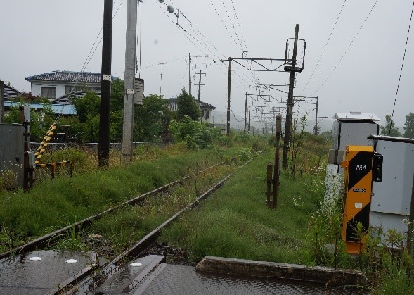 大津波で分断されたJR常磐線の一部は3年余り経っても不通で、雑草で覆われていた =小高駅近くで