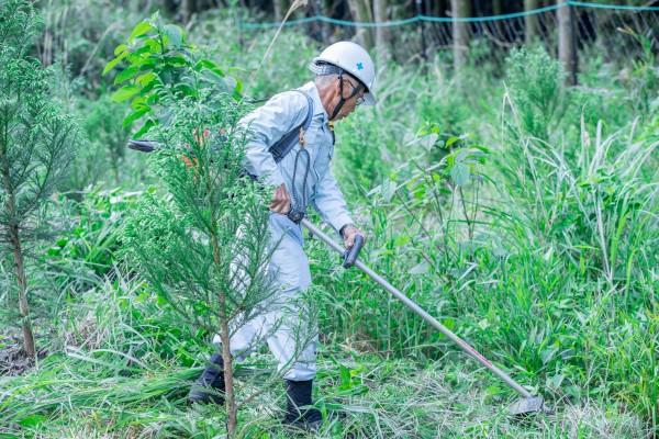 下刈りの作業をする木野さん。日光を遮るものがないため、夏場は気温がかなり上昇する。1時間おきのこまめな休憩と水分補給が欠かせない