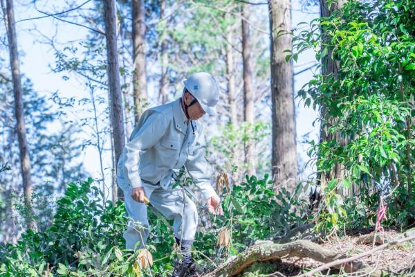 森の中をどんどん分け入って行く木野さん。その足取りはとても軽やか