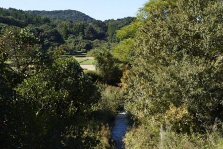 ダム建設予定地とされている石木川。この小さな川に、総貯水容量約548万トンの巨大なダムが作られようとしている